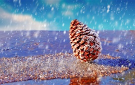 Preview wallpaper Spruce fruit, snowy