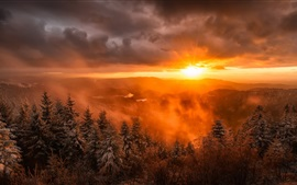 Sunrise, trees, fog, clouds, snow, winter, dawn