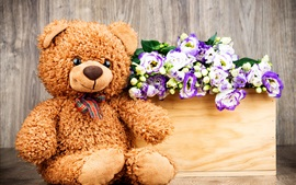 Preview wallpaper Teddy, toy bear, flowers