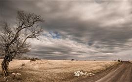 Дерево, дорога, облака, поля