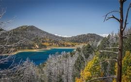 Vorschau des Hintergrundbilder Bäume, See, Berge, Schnee, Winter