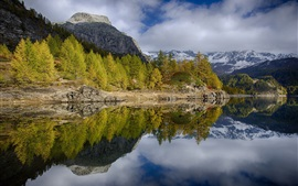 Trees, mountains, lake, water reflection, nature landscape
