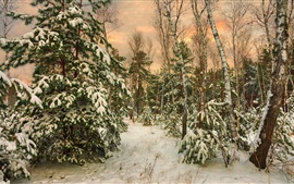 Preview wallpaper Trees, snow, dusk, winter