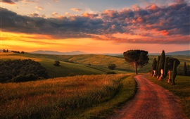 Preview wallpaper Tuscany, road, trees, fields, clouds, morning, Italy