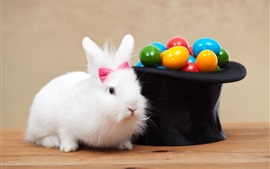 Preview wallpaper White rabbit and colorful eggs, Easter