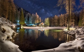 Preview wallpaper Winter, lake, house, trees, forest, snow, night, starry