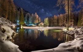 Inverno, lago, casa, árvores, floresta, neve, noite, estrelada