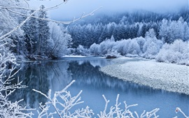 Winter, snow, trees, river