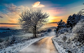 Preview wallpaper Winter, snow, trees, road, sunset
