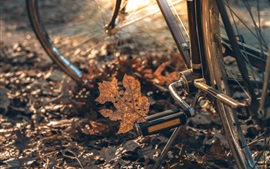 Preview wallpaper Bike, wheel, leaf, autumn
