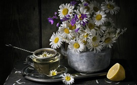 Preview wallpaper Chamomile, flower tea
