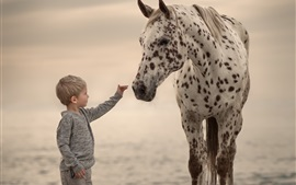 Preview wallpaper Cute little boy and horse