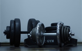 Preview wallpaper Dumbbells, gym