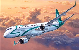 Preview wallpaper Embraer ERJ 190 passenger plane