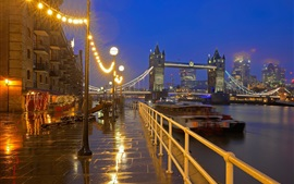 Inglaterra, Londres, Támesis, Tower Bridge, noche, luces