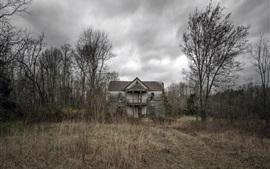 Floresta, casa de madeira, grama, nuvens, crepúsculo