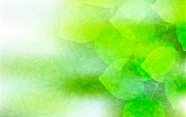Green leaves, fresh, creative design