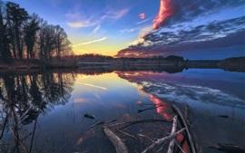 Озеро, деревья, отражение воды, облака, утро