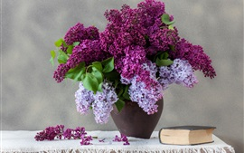 Preview wallpaper Lilac flowers, book