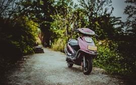 Vista frontal de la motocicleta, carretera, árboles, borrosa