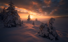 Preview wallpaper Norway, Ringerike, winter, snow, trees, clouds, sunset