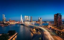 Rotterdam, Países Bajos, puente, río, ciudad, noche, luces