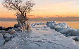 Mar, costa, gelo grosso, inverno