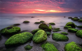 Preview wallpaper Sea, stones, moss, clouds, sunset