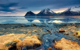 Preview wallpaper Seascape, Iceland, mountains, grass, sea