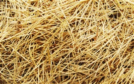 Preview wallpaper Straw, grass