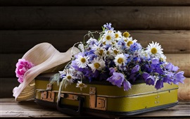 Suitcase, chamomile flowers, hat