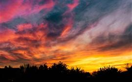 Закат, небо, деревья, тьма