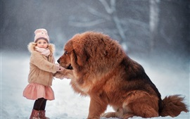Preview wallpaper Tibetan Mastiff, dog, child girl, snow, winter