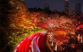 미리보기 배경 화면 도쿄도, 일본, 도로, 나무, 밤, 조명
