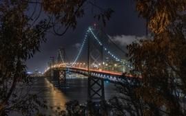 Eua, são francisco, califórnia, ponte baía, noturna, iluminação