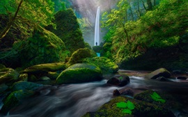 Preview wallpaper Waterfall, moss, green, bushes, stones, people, USA