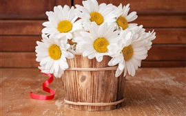 Preview wallpaper White chamomile, bucket