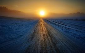 Invierno, camino, salida del sol, nieve, niebla, mañana