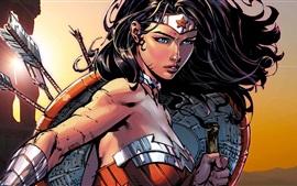 Preview wallpaper Wonder Woman, Diana, art picture