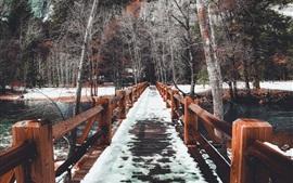 Puente de madera, nieve, árboles, invierno