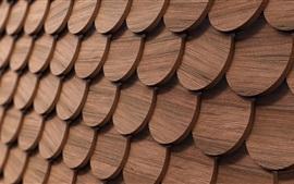 Círculos de madeira