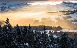 Preview wallpaper Alps, sun rays, mountains, morning, trees, snow, winter