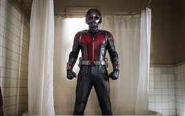 Preview wallpaper Ant-Man in bathroom