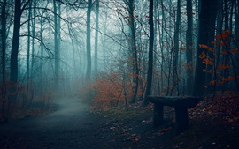 Preview wallpaper Autumn, trees, fog, bench, path, park