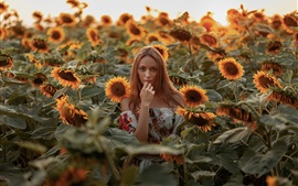 Preview wallpaper Blonde girl in the sunflowers field