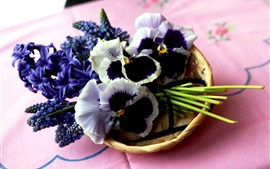 Preview wallpaper Blue hyacinth and muscari pansies