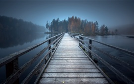 Preview wallpaper Bridge, trees, lake, fog, morning
