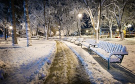 Bulgaria, night, snow, park, bench, cold winter