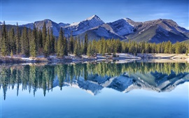 Montanhas Rochosas canadenses, Lagoa Miosótis, árvores, montanhas, reflexão da água