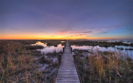 Chesapeake, wooden path, bay, sunset